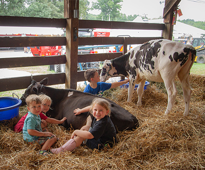 Children petting cows